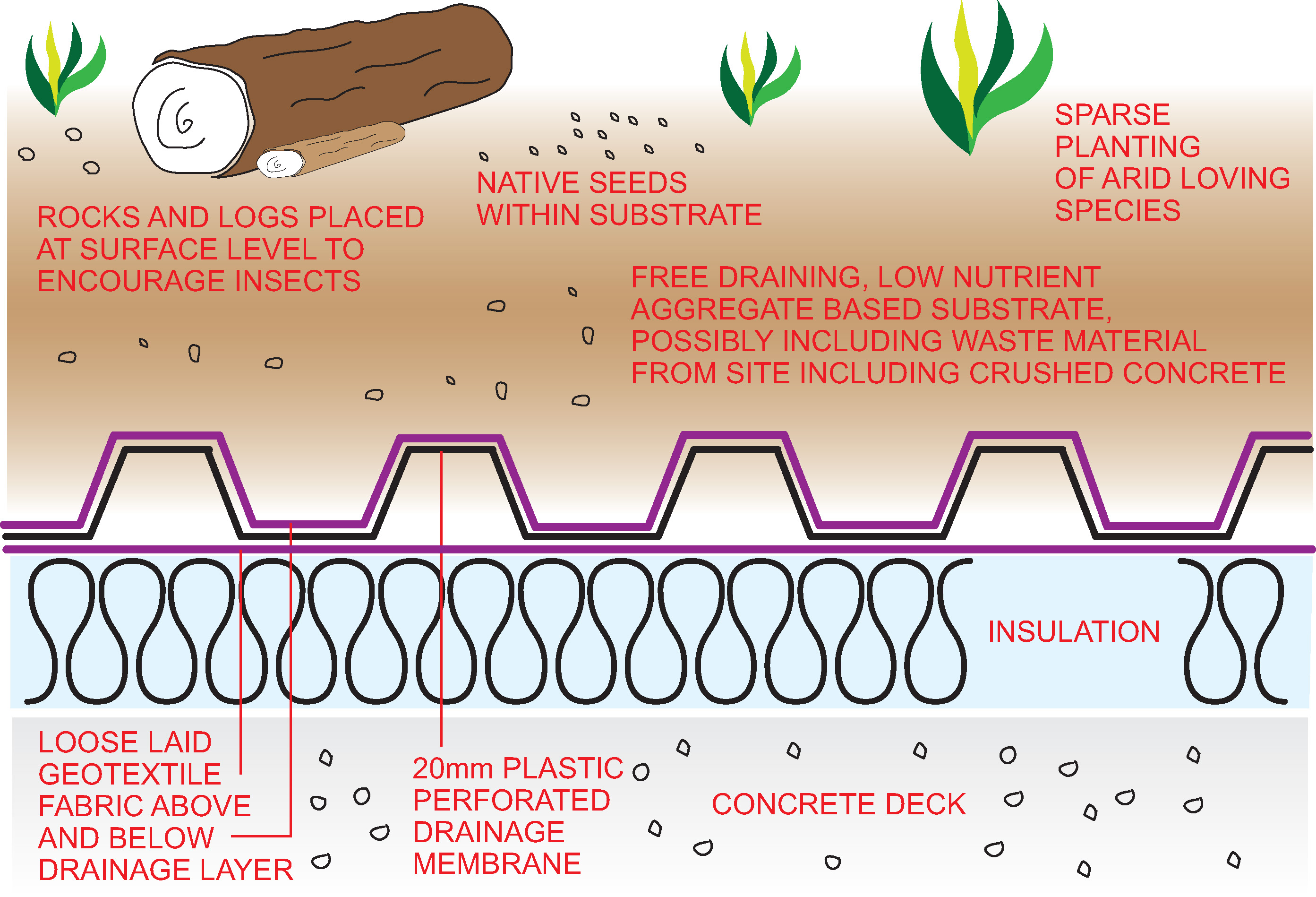 Biodiverse Roof Systems Wallbarn