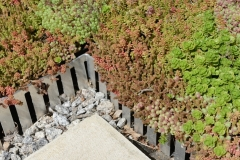 Wallbarn 'Green Roof System' shoot in Wimbledon and Heathrow