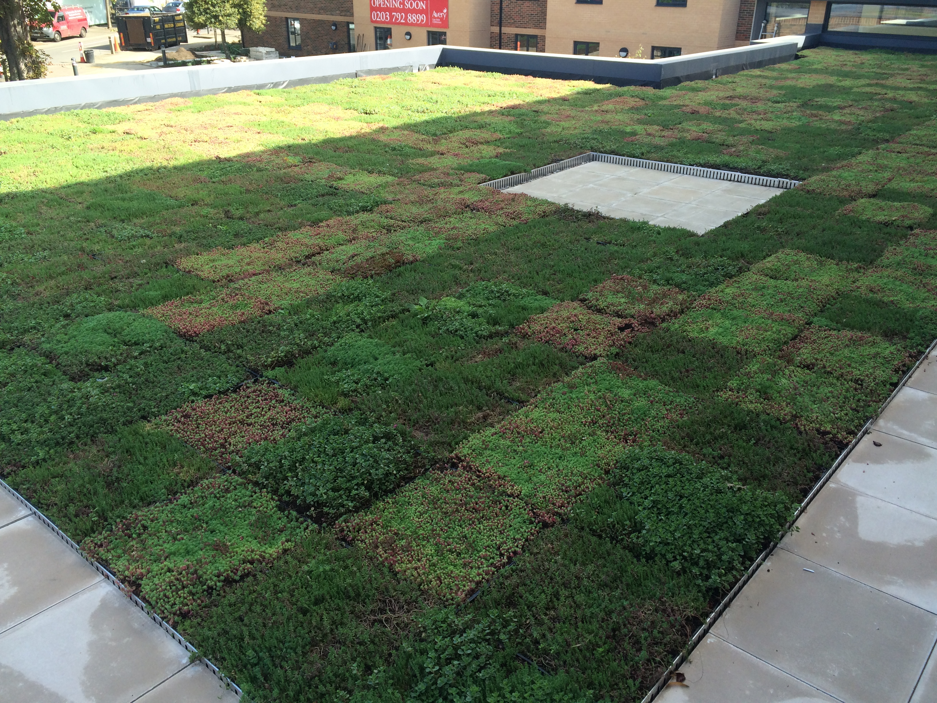 Quick And Simple Green Roof Installations Wallbarn