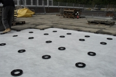 Plastic pave pads supporting concrete paving