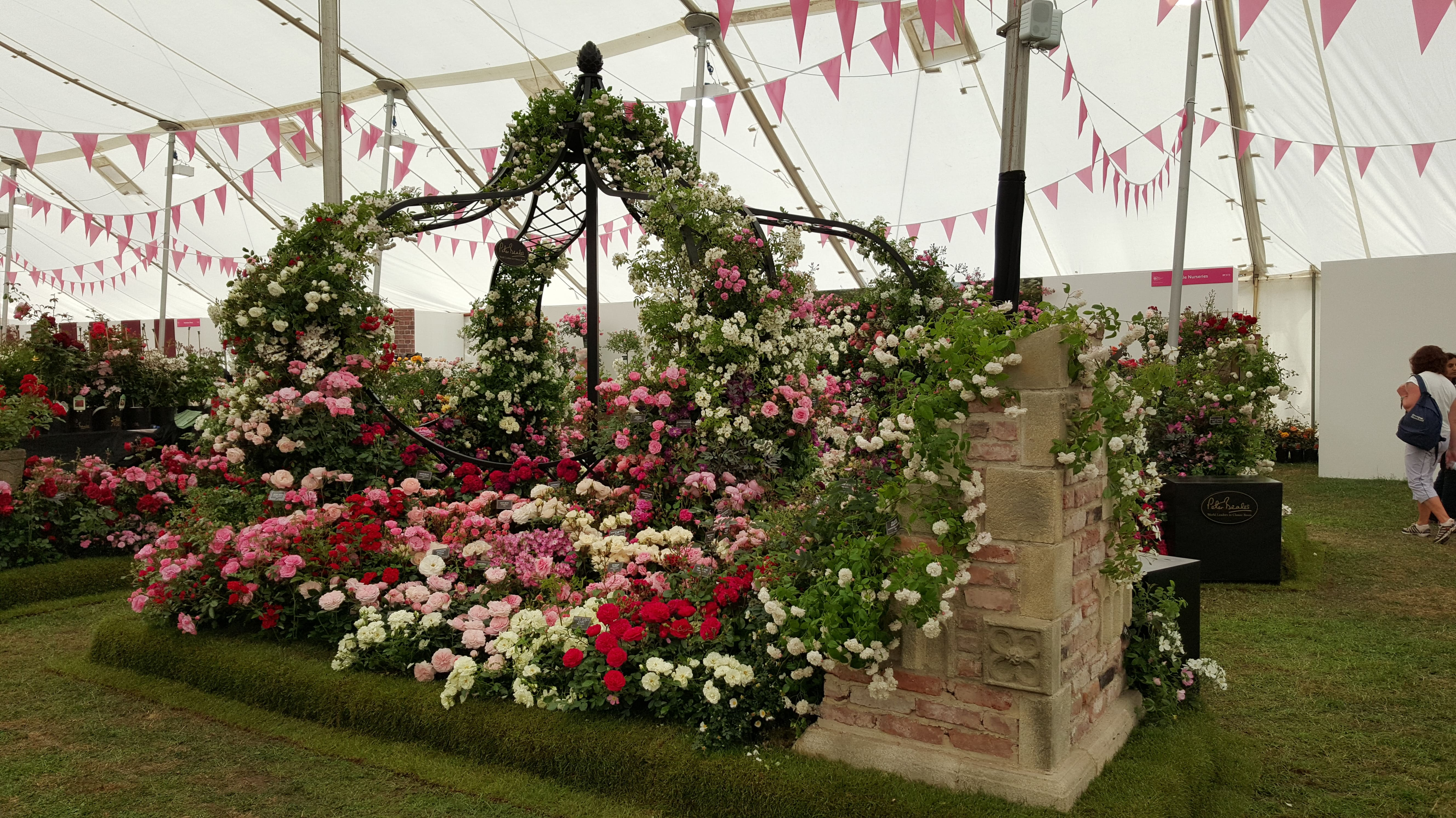 Hampton court flower show 2015 wallbarn - Hampton court flower show ...