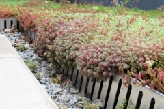 Green roof aluminium edging 3