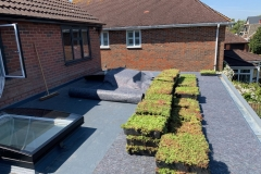 Installing green roof in difficult access 7