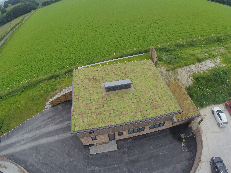 Why Choose A Sedum Green Roof System Wallbarn