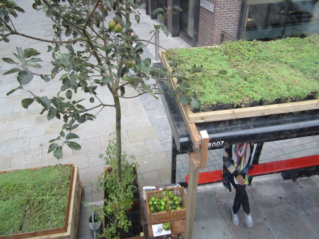M Tray Modular Green Roofs And Tfl Wallbarn