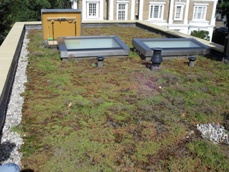 Green Roof Accessories