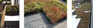 A Look At Eco Green Roofs And Their Benefits