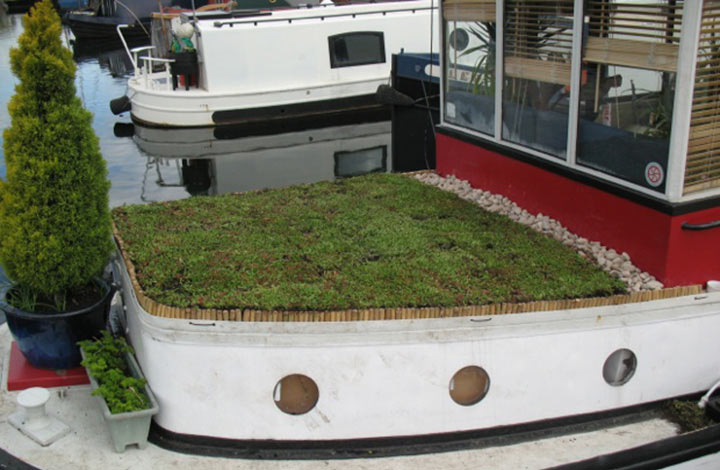 Canal barge green roof view