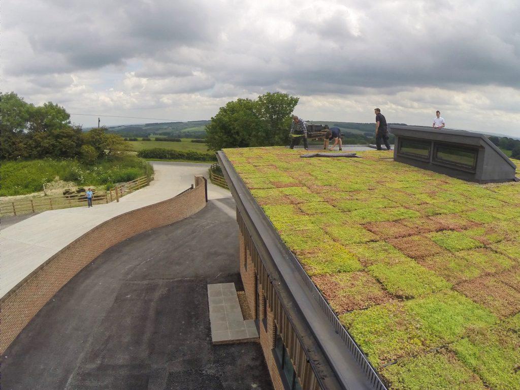 Sedum Roof Garden Systems Wallbarn