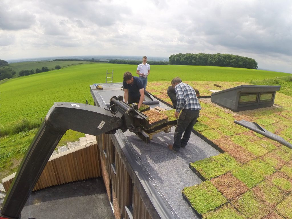 M Tray 174 Modular Green Roof Wallbarn