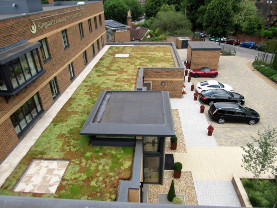 An image of a green roof installation at Victoria Drive Care Home, Wimbledon