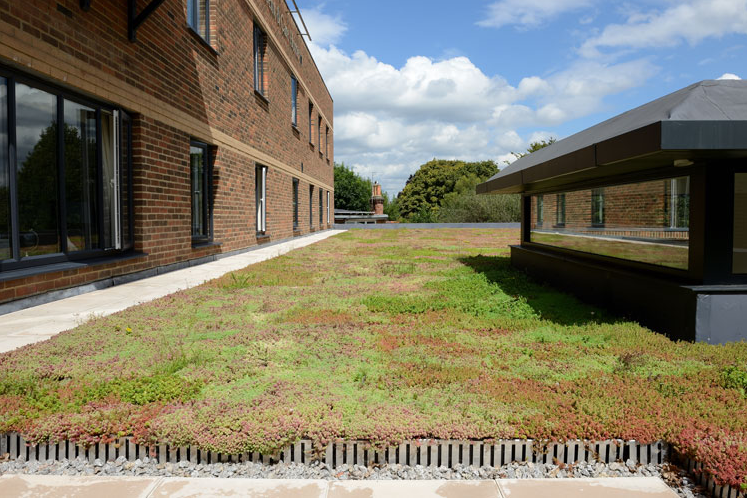 Green Roof Installation UK