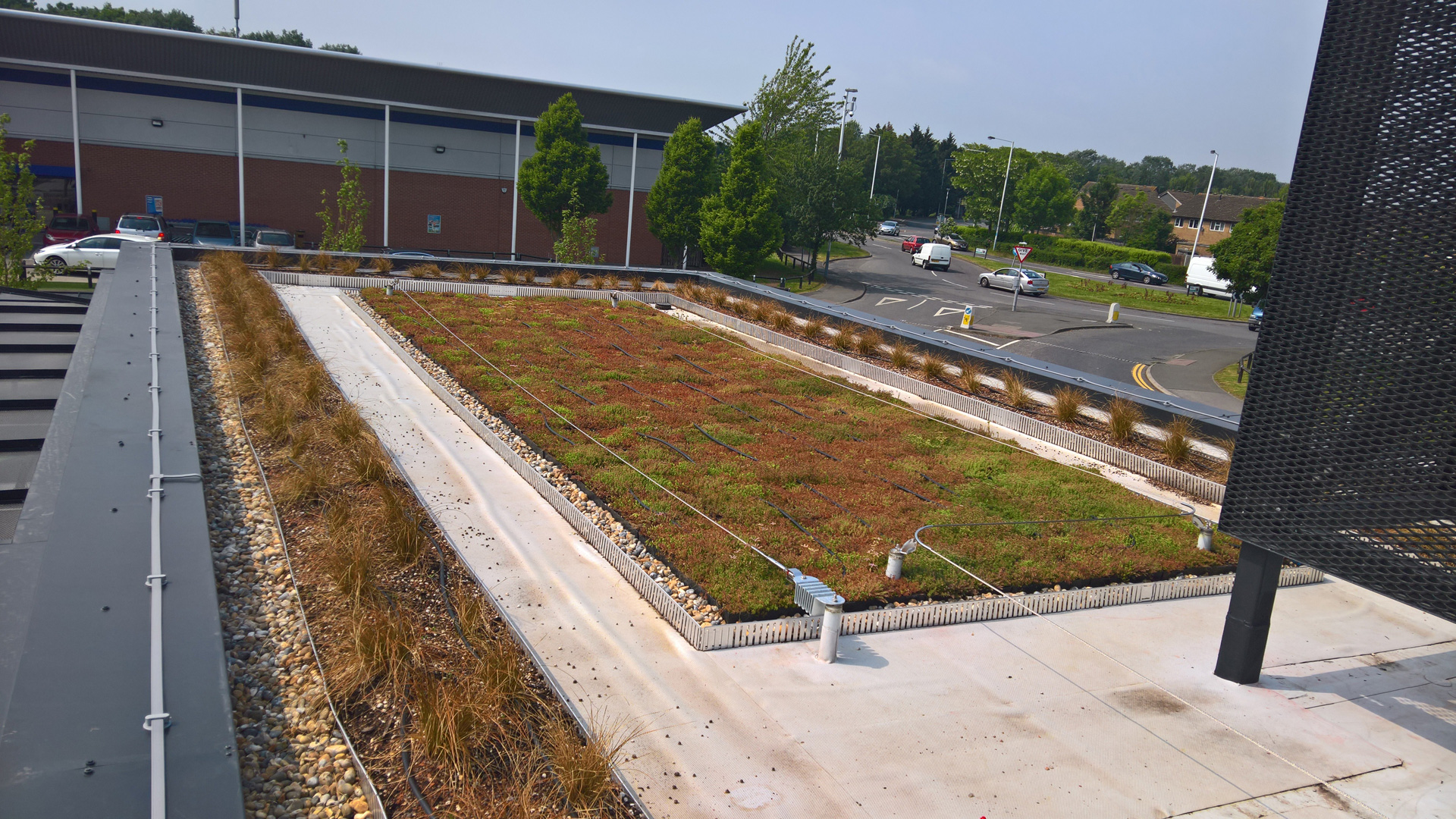 Green roof, Starbucks drive-thru