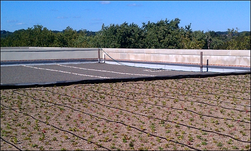 An image of a blue roof