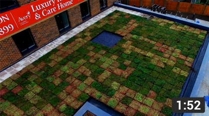 How To Build A Green Roof