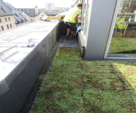 An image of a green roof installation at The May Fair Hotel in London