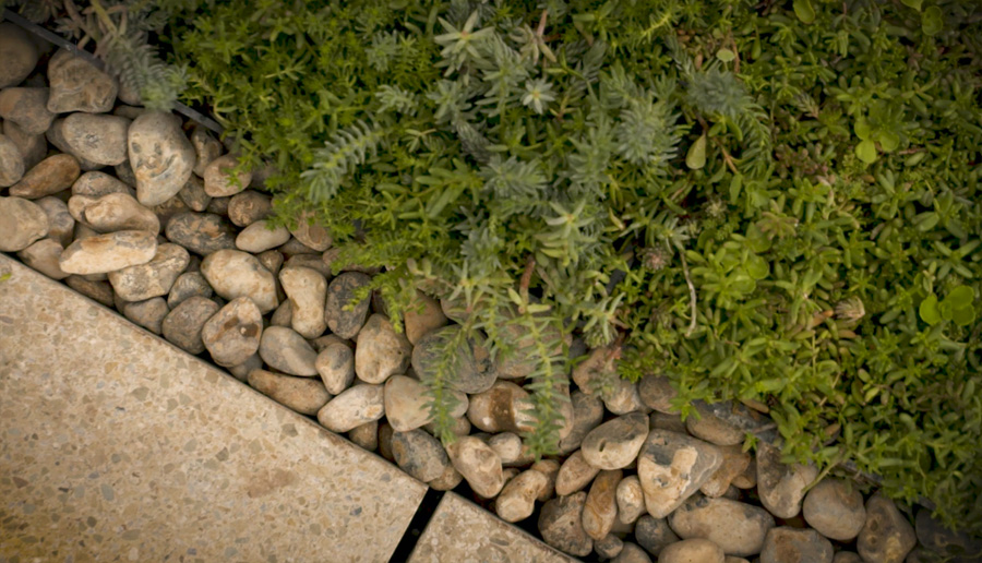 Borders of green roof with riverstones