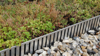 Could Green Roofs on Schools Be a Climate Solution?