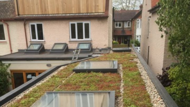 M-Tray sedum green roofs get more and more beautiful