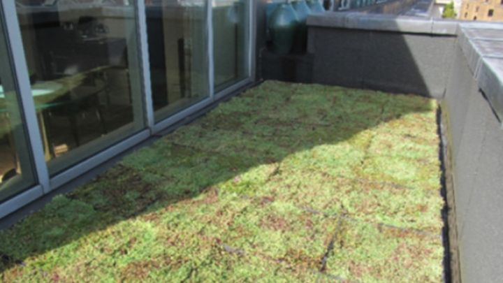 Green roof construction on hotel room terrace