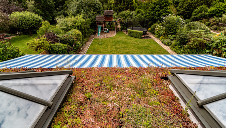 How To Create The Perfect, Instant Green Roof