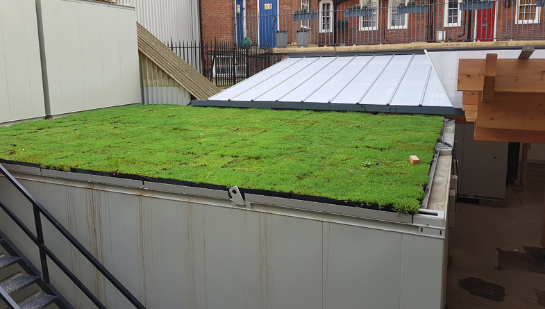 Temporary green roof