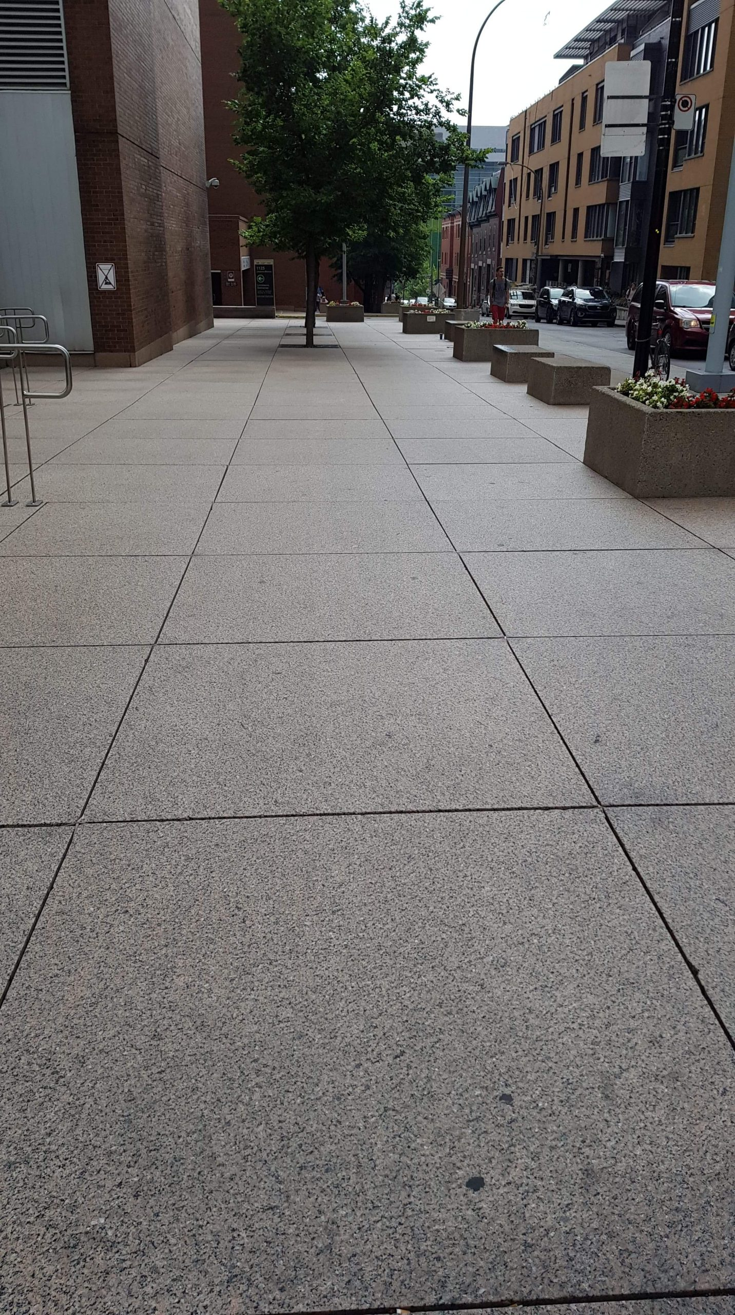 Megapad Paving Pedestals with pavement slabs after 5 years