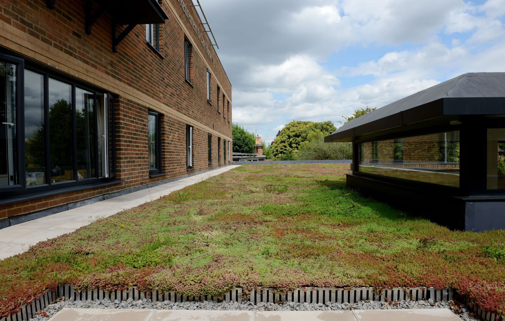 Why Are Green Roofs Are A Must-Have For Modern Cities?